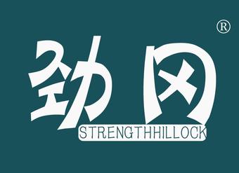 10-V254 劲冈 STRENGTHHILLOCK