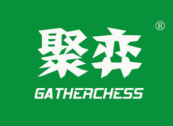 41-V191 聚弈 GATHERCHESS