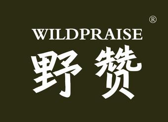 32-V242 野赞 WILDPRAISE