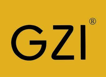 29-V244 GZI