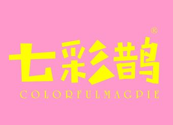 02-V138 七彩鹊 COLORFULMAGPIE