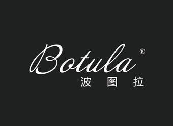 29-X853 波图拉