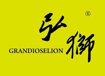 12-V388 弘狮 GRANDIOSELION