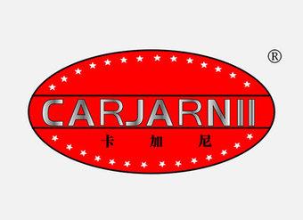 11-V091 卡加尼