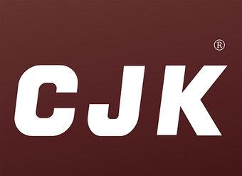 03-V111 CJK