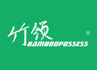 03-V881 竹领 BAMBOOPOSSESS