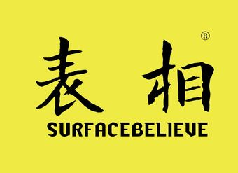 20-V768 表相 SURFACEBELIEVE