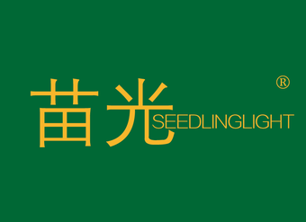 31-V294 苗光 SEEDLINGLIGHT