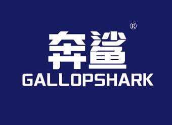 32-V270 奔鲨 GALLOPSHARK