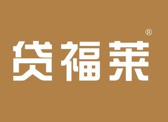 36-VZ055 贷福莱