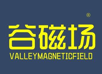30-V1066 谷磁场 VALLEYMAGNETICFIELD