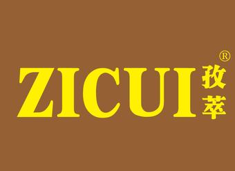 32-VZ342 孜萃