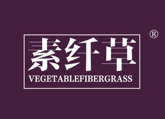 05-V725 素纤草 VEGETABLEFIBERGRASS