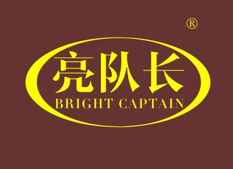 11-V782 亮队长 BRIGHT CAPTAIN