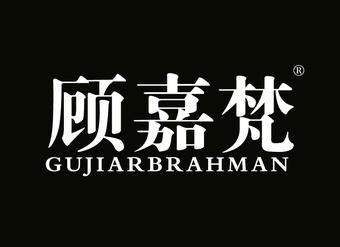 20-V921 顾嘉梵 GUJIARBRAHMAN