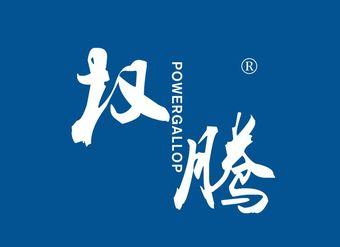 25-V3595 权腾 POWERGALLOP