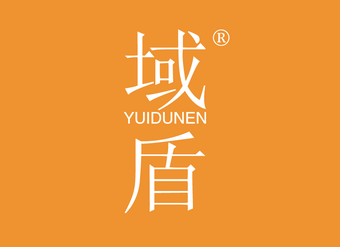 06-X300 域盾 YZUIDUNEN