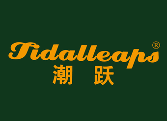 12-V415 潮躍 TIDALLEAPS