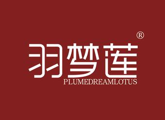 35-V390 羽梦莲 PLUMEDREAMLOTUS