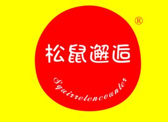 29-VZ1066 松鼠邂逅 SQUIRRELENCOUNTER