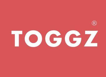 07-V355 TOGGZ