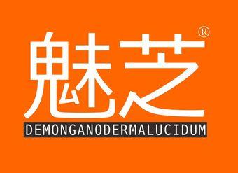 12-V453 魅芝 DEMONGANODERMALUCIDUM