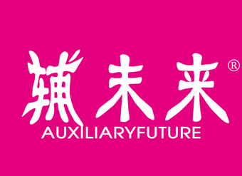 41-V259 輔未來 AUXILIARYFUTURE