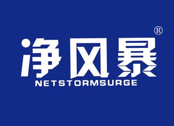 11-VZ900 净风暴 NETSTORMSURGE