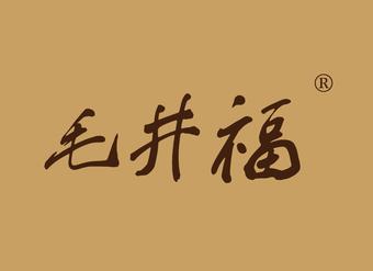 33-VZ655 毛井福