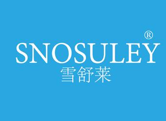 03-V1204 雪舒莱 SNOSULEY