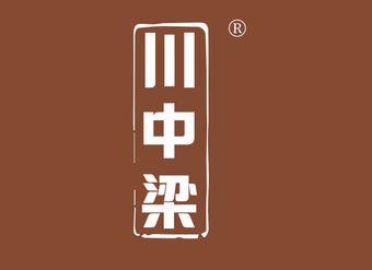 33-V689 川中梁