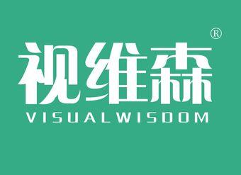 44-V289 视维森 VZISUALWISDOM