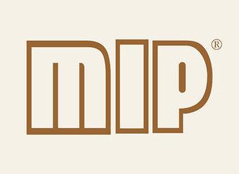 28-V067 MIP