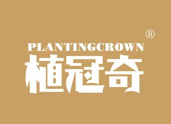 32-V459 植冠奇 PLANTINGCROWN