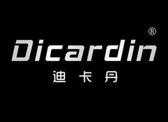 12-V201 迪卡丹