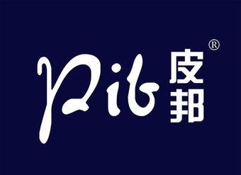 12-V219 皮邦