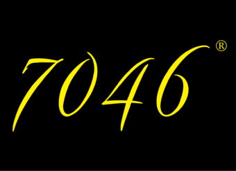 25-V821 7046