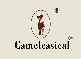 25-V2094 骆驼图形+CAMELCASICAL