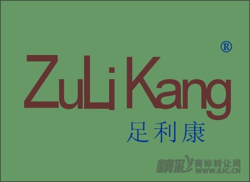 足利康+ZuLiKang