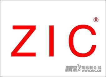 01-0030 ZIC