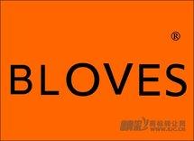 04-0034 BLOVES