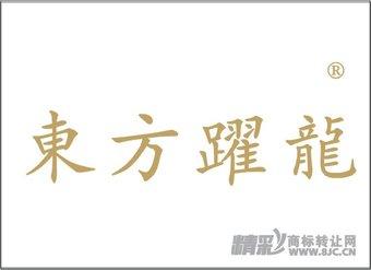 06-0055 东方跃龙