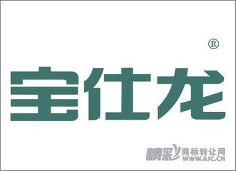 06-0163 宝仕龙