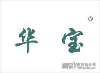06-0299 华  宝