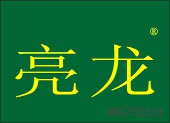 09-1005 亮龙