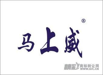 10-0076 马上威
