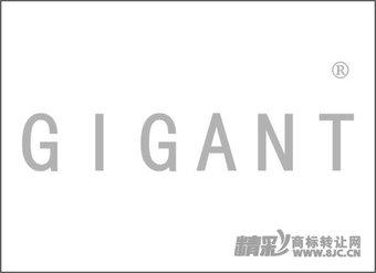 12-0497 GIGANT
