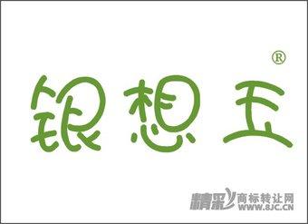 14-0138 银想玉