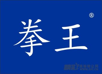 05-0104 拳王