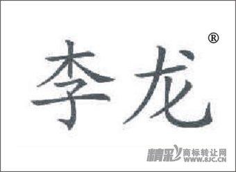 21-0246 李龙